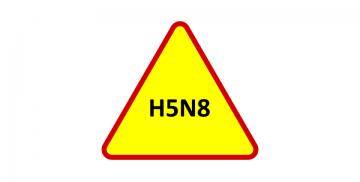 Napis H5N8 w znaku ostrzegawczym