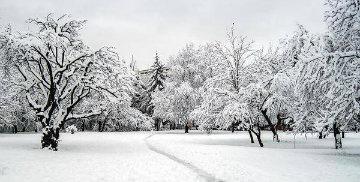 Zimowe utrzymanie dróg